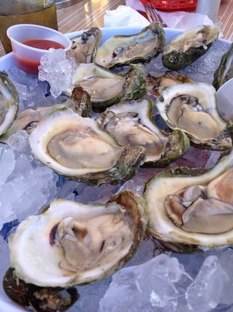 Rusty's Seafood and Oyster Bar: dozen oysters