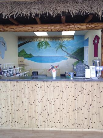 Island Snowball Company: inside our shop