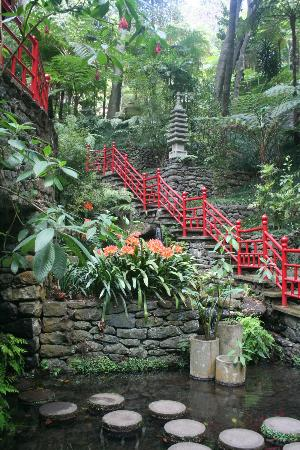 Monte Palace Tropical Garden : Chinese garden area