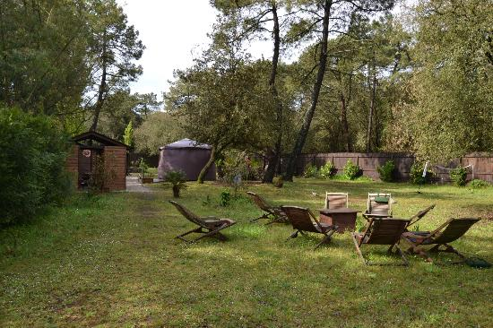 Le Bois Saint Martin : Espace Barbecue