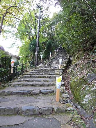 Jingoji Temple: Treppenaufstieg zum Tempel
