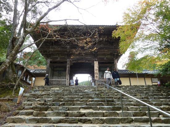 Jingoji Temple: Romon Tor