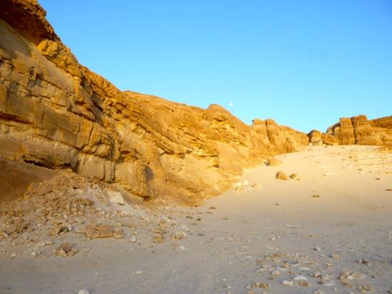 Blue Beach Club: Wadi Arada, Desert Trip.