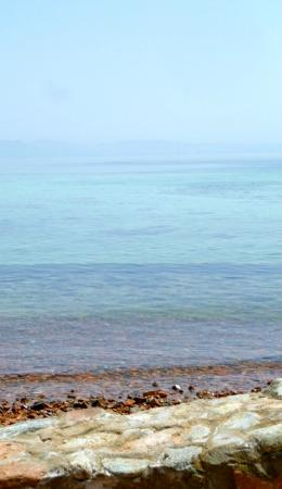 Blue Beach Club: More of the Sea, taken at Eel Garden