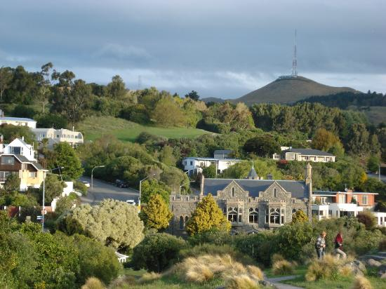 Sugar Loaf hill with Victoria Park & Sign of the Takahe in foreground