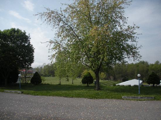 Stardust Motel: Outdoors