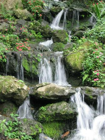 Dunnellon, FL: Small waterfall along the trail