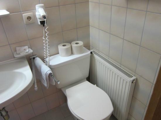 Hotel Pension Burgschrofn : ホテルのトイレ