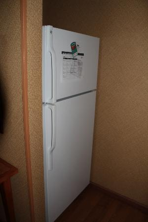 Homewood Suites by Hilton Newburgh-Stewart Airport: Full size Fridge