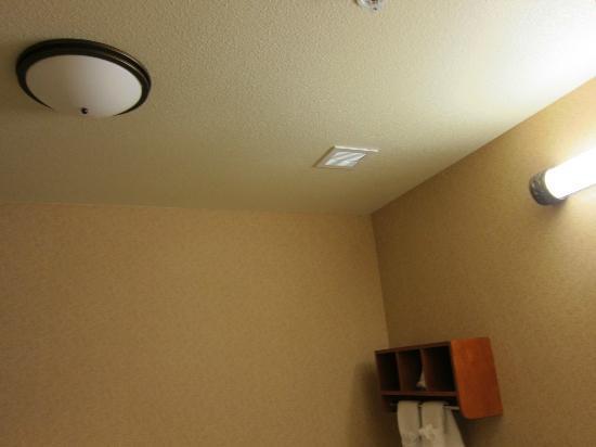 Hampton Inn & Suites Clovis - Airport North: burnt out main bathroom light leaving no light for the shower
