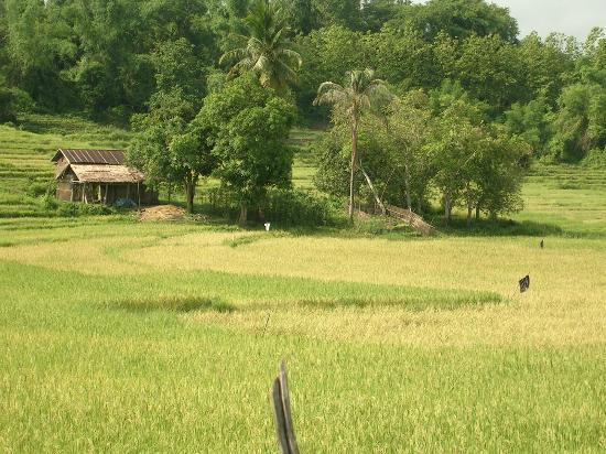 Arissara House: typical rural scene