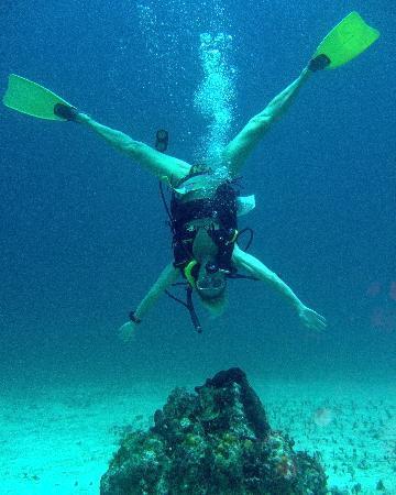 Hedonism II: diving