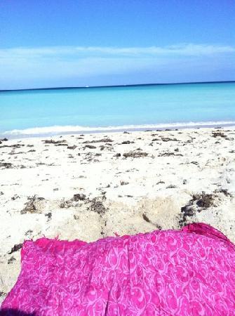 Beach Place Hotel: beach