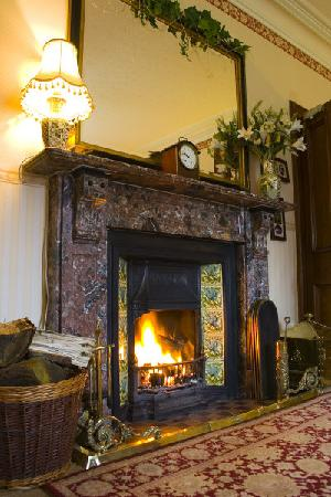 Fairview Guest House: The fireplace in the lounge