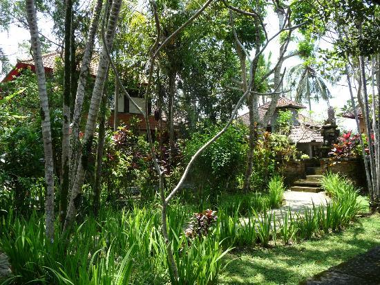 Sanggingan Villa: the garden