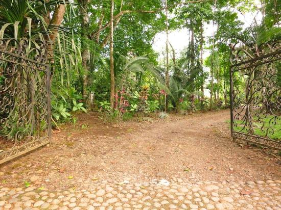 Forest Hills Suites: Entrance to your own private La Paz like gardens and home.