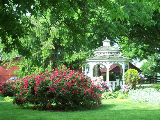 1851 Historic Maple Hill Manor Bed & Breakfast: Slow down and relax at Maple Hill Manor...
