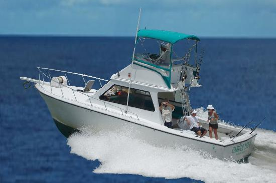 ‪Carole Ann II Private Fishing Charters‬