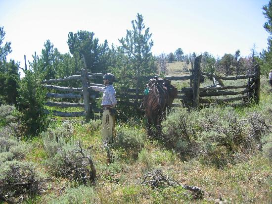 Outlaw Trail Ride: The outlaws corral - Leslie and Stoney