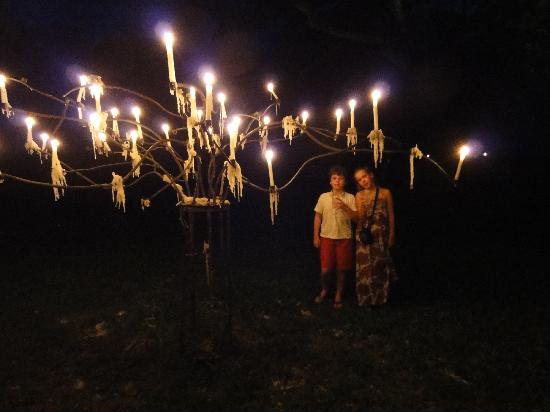 Flames of the Forest: Children under the candelabra