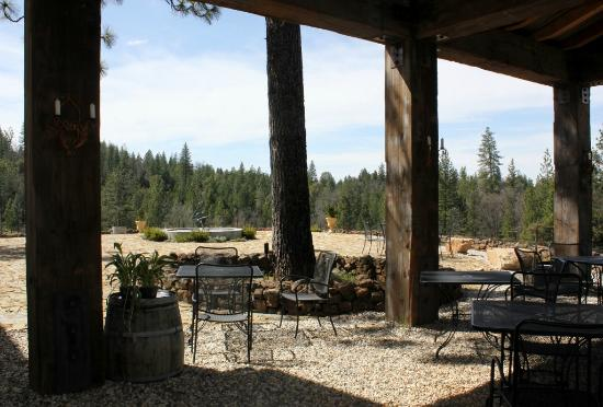 Placerville, CA: Patio overlooking the vines