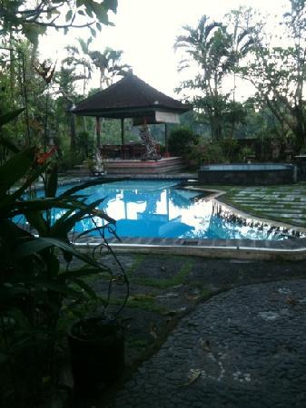 Okawati Hotel: beautiful pool