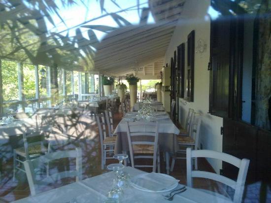 Meldola, อิตาลี: dehors sotto il pergolato