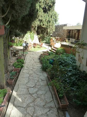 Safed Inn: Area