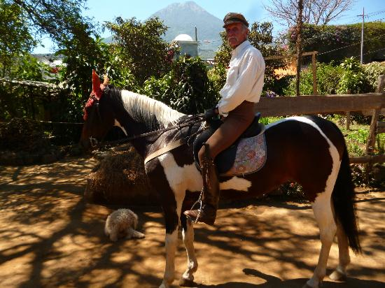 Ravenscroft Riding Stables: Fred on the return from our hack