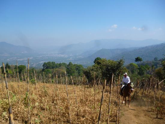 Ravenscroft Riding Stables: View from above san Juan del Obispo (overlooking Antigua.)