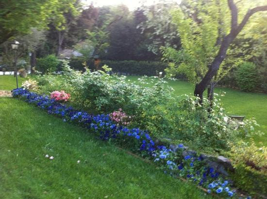Villa Magnolia Relais: il giardino