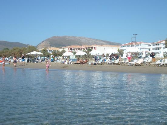 Louis Zante Beach: spiaggia hotel