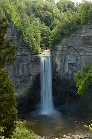 The Inn at Gothic Eves: Taughannock Falls State Park Inn