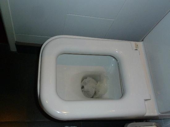 The Fairmount Hotel: blocked toilet