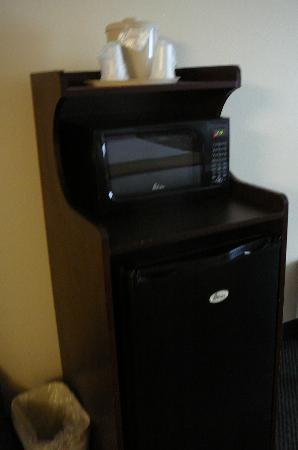 Holiday Inn Express & Suites Jacksonville - Blount Island : Microwave and mini refrigerator