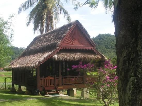 Sunset Valley Holiday Houses: Paddy House