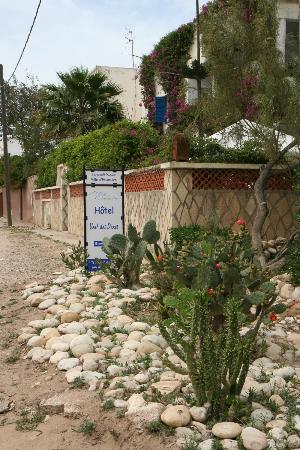 Hotel Vent des Dunes: Végétation en fleurs