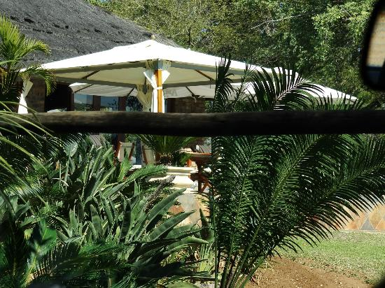 Elandela Private Game Reserve: BEAUTIFUL GROUNDS