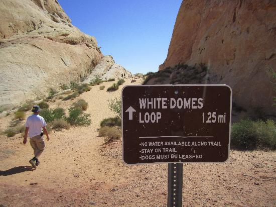White Domes Trail
