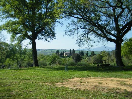 Agriturismo Torrenieri: PAESAGGIO