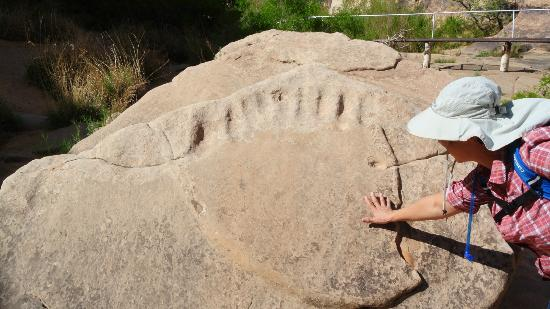 Rock Art Canyon Ranch: Indian Humor? A bear paw!