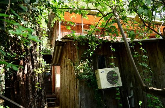 Olympos Orange Pension: other accommodation type