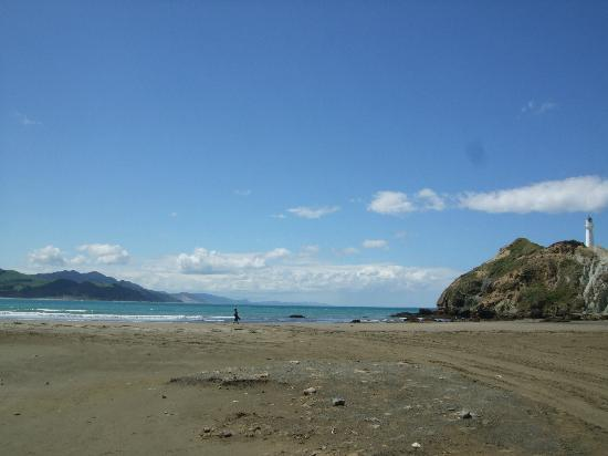 Castlepoint Holiday Park and Motels: sunny day