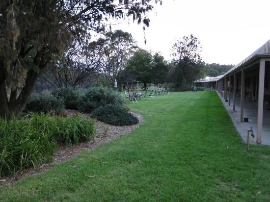 Cadell on the Murray: View outside our room into grounds