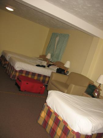 Redwings Lodge: This is one side of the room