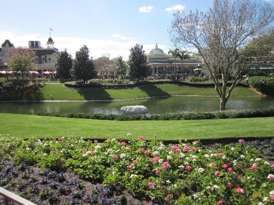 Walt Disney World Resort: gorgeous (at magic kingdom)