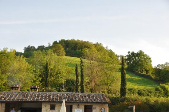Borgo al Cerro: Vista sulle colline dal residence