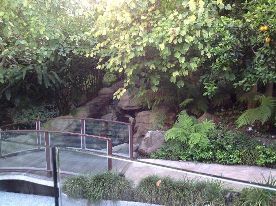 Sunset Marquis: View of the Waterfall from the Veranda of RESTAURANT