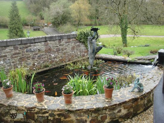 Pond secret garden picture of millbrook cottages for Secret garden pool novaliches