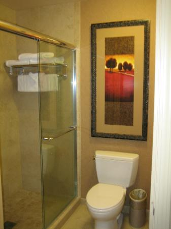 La Quinta Inn & Suites Twin Falls: Terrific bathroom